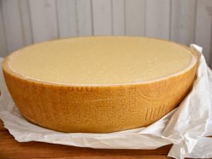 Parmesan Parmigiano Reggiano Pastaschüssel Pastaschale
