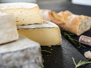 Saint Nectaire kaufen Käse Frankreich Auvergne