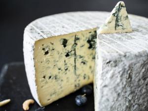 Bleu Auvergne Frankreich Käse Blauschimmelkäse Schimmelkäse